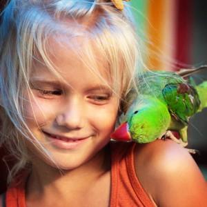 Амелия и попугай