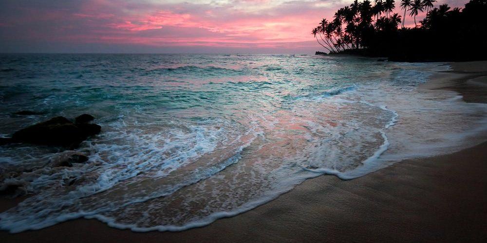 Пляж.Шри-Ланка. Январь-февраль 2014