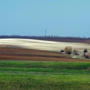 весенний пейзаж в зеленых, коричневых и соломенных тонах