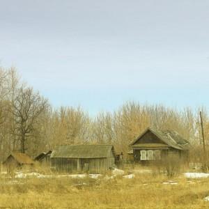 голые деревья в деревне