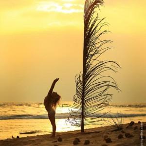 ребенок и пальмовая ветвь