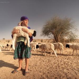 девочка с ягненком в пустыне Тар в Индии. Фото Люся Маратканова.