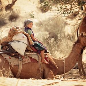 Сафари на верблюдах в пустыне Тар в Индии. Фото Люся Маратканова.
