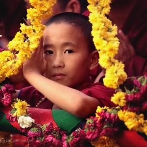 Маленький тибетский монах приветствует Далай Ламу. Фото Люся Маратканова