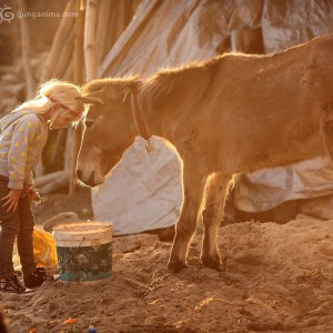 девочка и осел во дворе монастыря Гьето, Индия 2014. Фото Люся Маратканова
