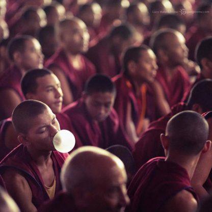monk is chewing gum in dalai lama teachings in india
