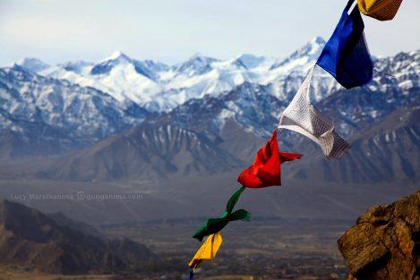 Гималайский хребет. Ладакх (Ладак), Ле (Лех). Фото Люси Мараткановой