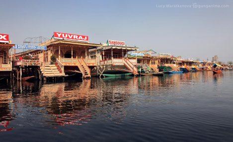 берег озера Дал в Сринагаре (Шринагаре). Фото Люся Маратканова