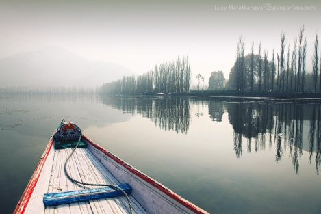 лодка шикара на озере Дал в Сринагаре (Шринагаре). Фото Люся Маратканова