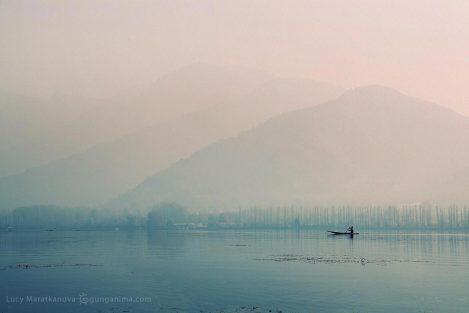 озеро Дал на рассвете в Сринагаре (Шринагр). Индия 2010
