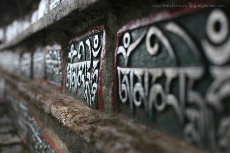 тибетские камни мани. Ладак (Ладакх), Ле (Лех). Фото Люси Мараткановой.