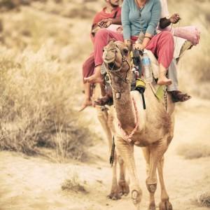 сафари на верблюдах пустыня тар. Фото Люся Маратканова
