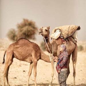 девушка и два верблюда в пустыне Тар