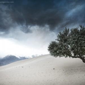 песчаные дюны в долине скарду в пакистане