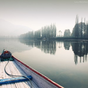shikara boat on lake in sringagar in india
