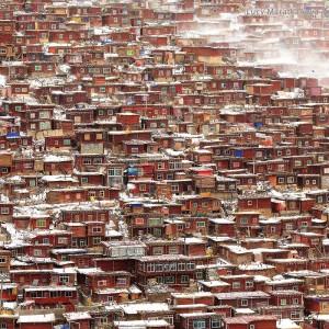 буддийский университет в тибете