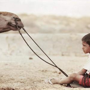 little cameleer in tar desert in india