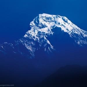 вершина аннапурны в непале
