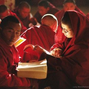 monks in sershul buddhist monastery