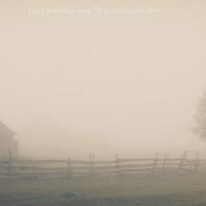 туман в деревне в бурятии в россии