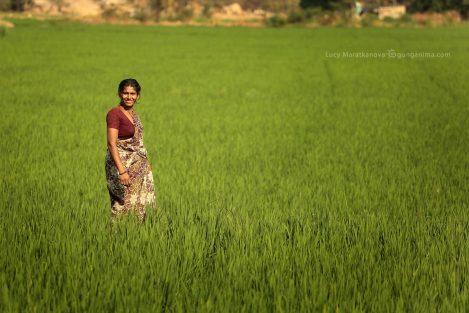 Хампи. Индийская женщина в зеленом поле. Фото Люси Мараткановой.