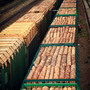 вагоны с дровами в россии