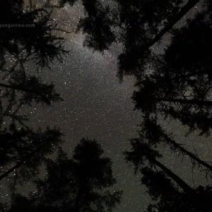 млечный путь в ночном небе в росии