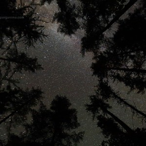 milky way in night sky above baikal in russia