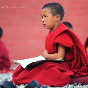 little buddhist monk at studying in dharamsala in india