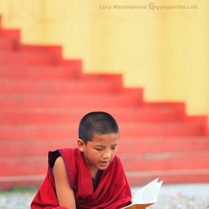 little buddhist monk in dharamsala in india