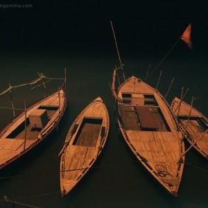 boats in varanasi in india