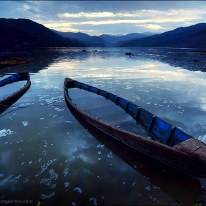 boats on the shore in pokhara in nepal