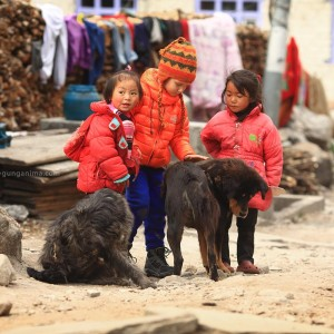 children in nepal and dog