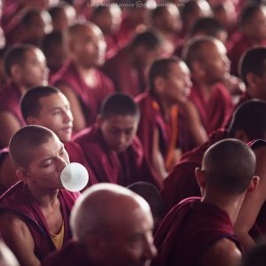monk with bubble gum in dalai lama teachings in bylakuppe in india