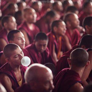 монах со жвачкой во рту на учениях далай ламы в билакуппе в индии