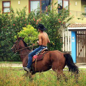 наездник верхом на лошади в парати в бразилии