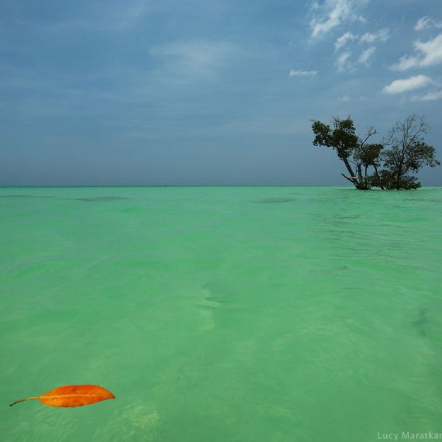 turquiose water on ocean in havelock island in andaman in india