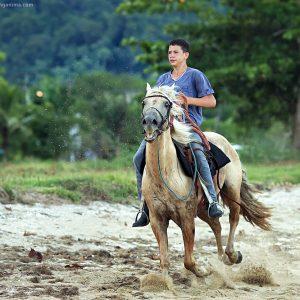 мальчик на лошади в парати в бразилии